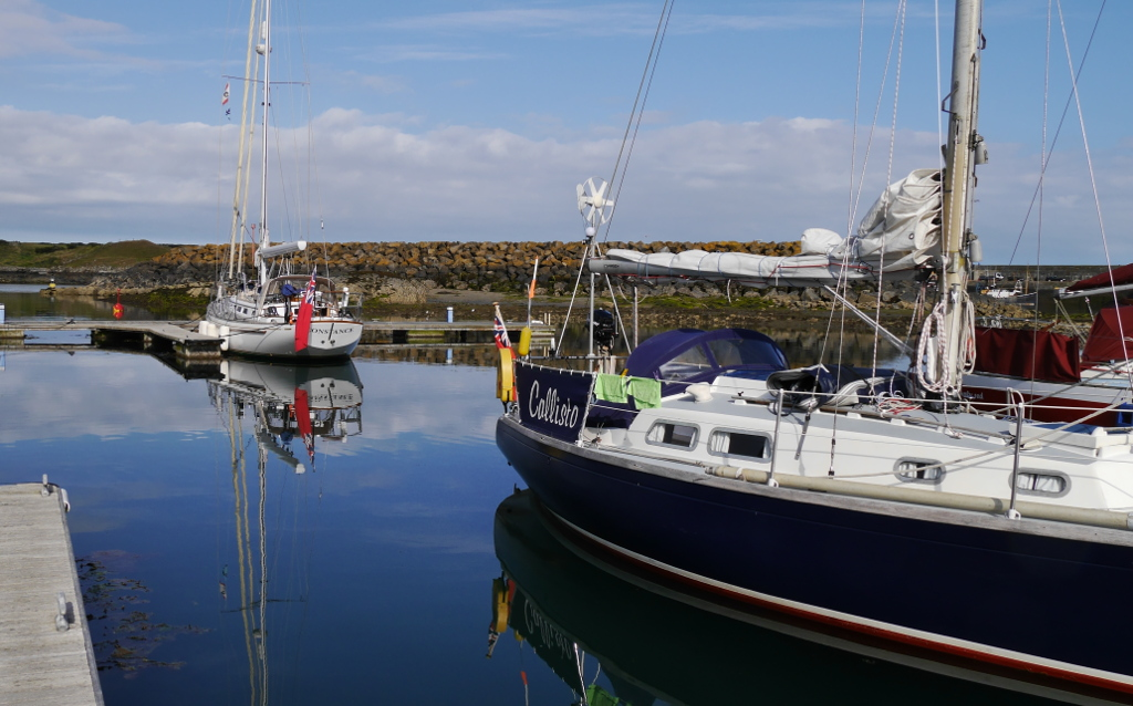 Callisto and Constance in Ardglass